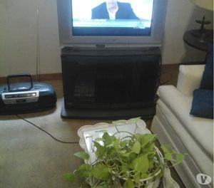 VENDO TV 29 NOBLEX-SAMSUNG PANTALLA PLANA CON C.REMOTO.
