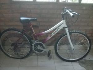 bendo bicicleta para niño/a rodado 24