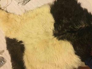 Compro alfombra pelo cabra oveja color salta posot class - Pieles de oveja ...