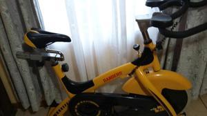 Bicicleta de spinning, randers