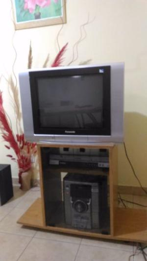 "Vendo TV 21"" Panasonic - Pantalla plana"