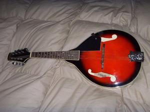 mandolina stagg de 8 cuerdas impecable