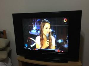 """Tv Phillips ultra slim 29"""""""
