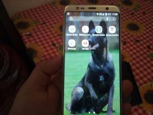Celular Samsung S8 liberado