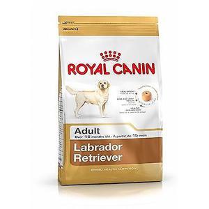 ROYAL CANIN LABRADOR RETRIEVER 30 ADULT X 12KG ENVIOS A