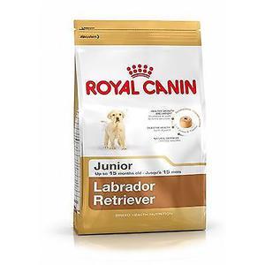 ROYAL CANIN LABRADOR RETRIEVER 33 JUNIOR X 12KG ENVIOS A