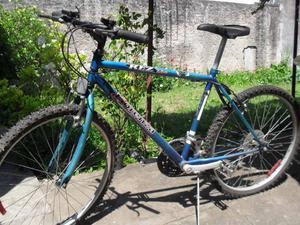 bici Fiorenza rod 26