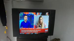 VENDO TV 29 PULGADAS C/CONTROL