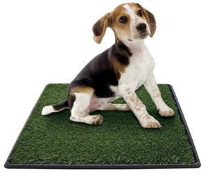 Alfombra Sanitaria De Pasto Dogs Stuff Para Perros Y Gatos