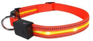 Collar Con Luces Led +cargador Para Perro Animal Pet Talle M