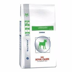 Royal Canin Dog Urinary 10 Kg Envío Gratis Pipeta Regalo