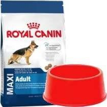 Royal Canin Maxi Adulto X 15 Kg + Comedero De Regalo