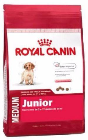 Royal Canin Medium Junior 15 Kg Cachorros Envíos Gratis