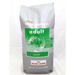 Royal Canin Performance Dog Adulto X 20 Kg Envio Gratis