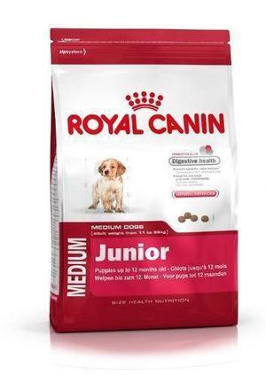Royal Medium Junior X 15 Kg Envío Gratis Pipeta Regalo