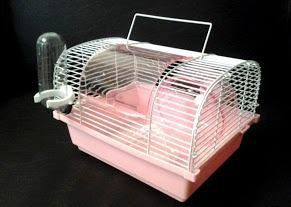 Hamstera Con Bebedero Comedero Y Rueda!!!!