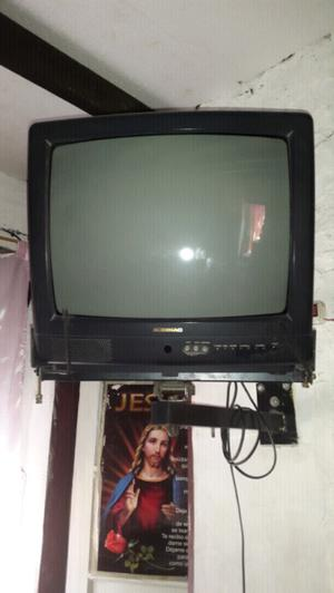 Tv audinac con soporte