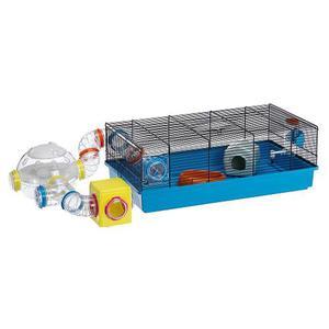 Hamstera Pequeña - Envíos Cap Fed - Pet Shop Beto