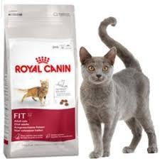 Royal Canin Fit 32 X 15 Kg Consultar Por Envio