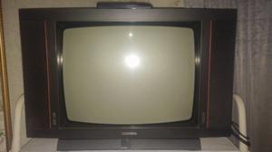 """Vendo TV de 20"""" Telefunnken con control remoto"""