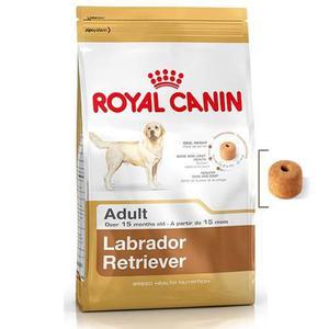 Royal Canin Labrador Retriever 12kg Envío Grati