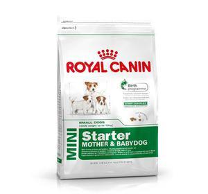 Royal Canin Mini Starter 3 Kg. Retira Por Recoleta!!!