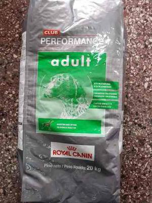 Royal Canin Performance Adulto X 20 Kg. Envio S/c Quilmes/