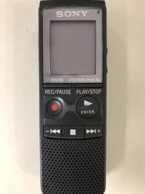 Grabador De Voz Digital Sony Icd-pxg