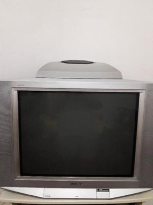 Tv Sony 29' pantalla plana con subwoofer