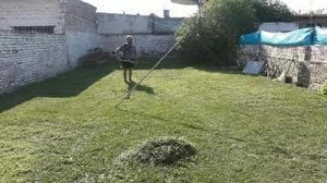 Trabajo de jardinería