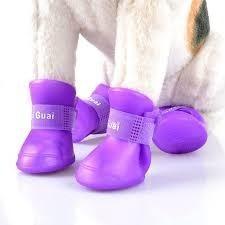 Zapatos De Lluvia Para Perros