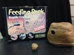 Alimentador De Grillos Para Reptiles Exo Terra