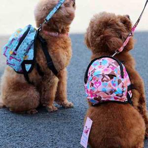 Mochila Mini Para Perros Pequeños, Distintos Modelos