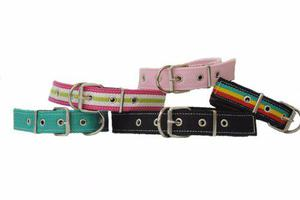 Pack Accesorios Para Veterinarias Y Pets Shop(114 Unidades)