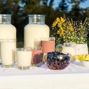 Yogurt Natural Organico Biodinamico Tambo Campo