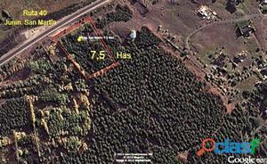 7,5 hectáreas sobre ruta 40