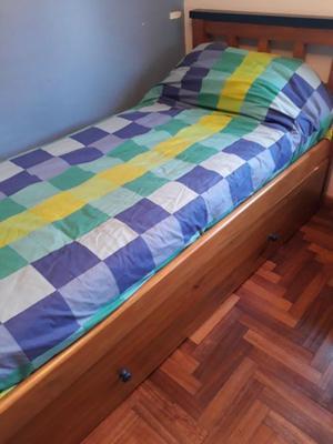Vendo Juego de Dormitorio (cama con carrito, mesa de luz y