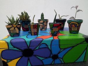 Macetas de cerámica con cactus