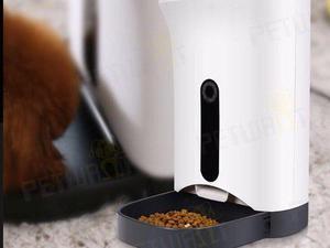 Comedero Dispenser Automatico Petwant Perros Gatos