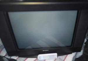 Vendo tv top house 21'pantalla plana c/ctrol remoto