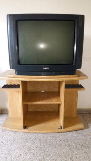 Vendo TV Goldstar 29 pulgadas c/control