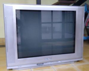 Vendo Tv Noblex 29 pantalla plana con control
