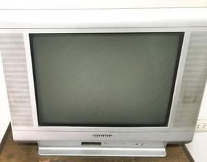 vendo tv philco 2l pulgadas pantalla plana