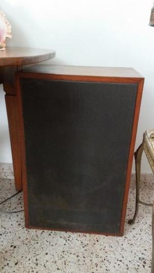 2 Bafles antiguos con Caja de madera