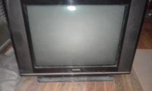 Vendo tv 29 pulgadas, con control remoto, anda el 70 % de la