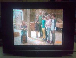 TV Serie Dorada- DA21PFS de 21 pulg. p. plana U.Slim [usados
