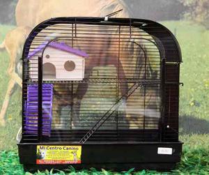Hamstera 2 Pisos Fren Acrilico Hamster +envío Gr.capi