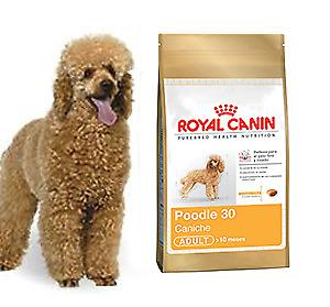 ROYAL CANIN POODLE 30 ADULT X 3 KG.