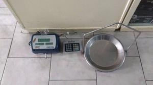 Vendo Balanza Colgante Systel Flaier Plus 30kgs C/conex P/im