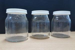 Frascos de vidrio de yogur Dahi vacíos con tapa